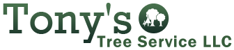 Logo, Tony's Tree Service LLC - Tree Services